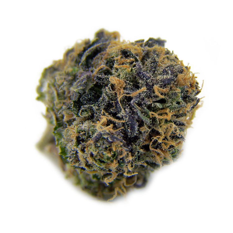 buy cannabis seeds online for sale